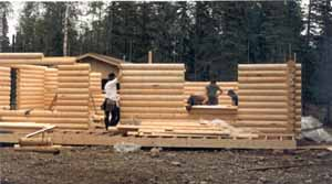 """This 8"""" Superior Logs pre-cut package was assembled by a 4-man conventional framing crew who had never stacked any logs before. They worked at a comfortable, safe pace & followed our pre-cut Superior Logs stacking guide & log wall layout (they are looking at the layout stapled to a piece of CDX). We provide the foundation bolt plan, detailed materials list (with shell packages), Superior Logs wall layout showing each log by number in each wall, stacking guide, log & hardware inventories, helpful hints, system explanation & recommended tool list within 1 week of ordering your package. You can become a Superior Logs """"expert"""" before your logs arrive at site."""