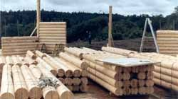 """The design is 6 sided with 3 prow front wings. 8 villagers assembled our 8"""" Superior Logs 8' & 10' walls in 5 days."""