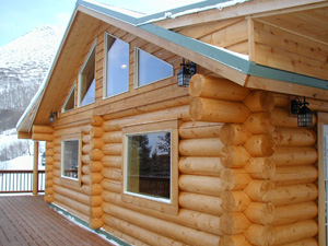 "Nice trim & window compliments 10"" logs."